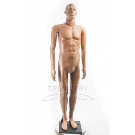 Манекен мужской Сенсей в полный рост на подставке