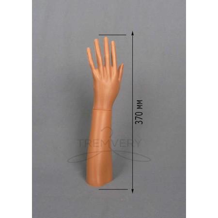 Манекен руки левой женской